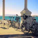 50 cosas que hacer en Málaga