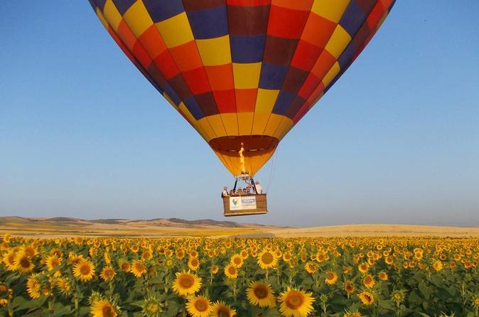 Volar en globo una experiencia inolvidable - Paseo en globo valencia ...